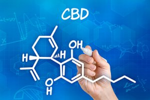 cbd-expert-cannabidiol what is CBD?