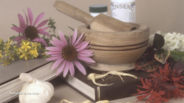 More governments around the world are moving to accept natural medicine: Could this be the beginning of a healthy future?