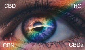 cbd vape pen full spectrum